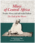 Mlozi book cover